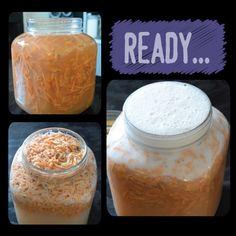 Lacto-Fermenting: Sweet Potato Fly!   Earthineer
