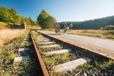 Cycle the Vennbahn Route, one of Europe's longest converted railway embankment bike track, leading you through Luxembourg and 2 more countries. Luxembourg, Eifel, Ferrat, European History, Railroad Tracks, Trail, Germany, Tours, Nature