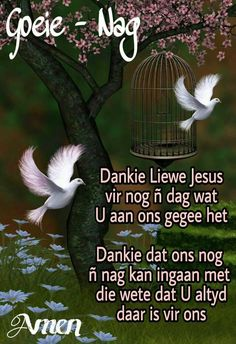 Lekker Dag, Evening Greetings, Goeie Nag, Angel Prayers, Afrikaans Quotes, Christian Messages, Good Night Quotes, Special Quotes, Sleep Tight