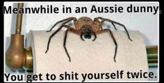 On toilets:   29 Of The Funniest Memes About Australia