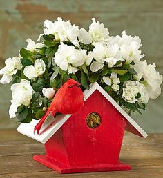 Birdhouse of Blooms - sent to Aunt Jane for Christmas (1800flowers)