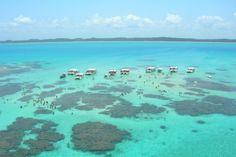 As águas cristalinas não estão restrita apenas ao Caribe. Aqui no Brasil é possível encontrá-las tanto no mar, quanto em rios.