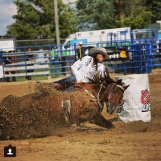 Rodeo wreck Barrel Racing Horses, Barrel Horse, Cowgirls, Cowgirl And Horse, Cowgirl Style, Funny Horse Memes, Cowgirl Pictures, Cowboy Photography, Rodeo Time