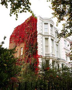 12.6 тыс. отметок «Нравится», 276 комментариев — Alex (@a_ontheroad) в Instagram: «• London is... ...an urban jungle... • 🇬🇧Some green and red, the perfect combination for an urban…»
