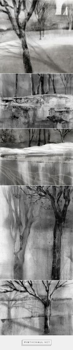 Drawings in Dust 1 - Iskra Fine Art - rendered in charcoal dust and water!