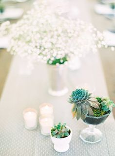 Succulent and Baby's Breath Centerpiece | photography by http://claryphoto.com/