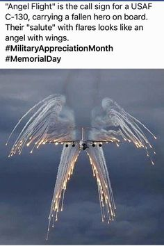 Sad but, just Beautiful! Has to be the hardest duty for any soldier or sailor . escorting the fallen comrades home. Angel Flight, Home Of The Brave, Land Of The Free, Real Hero, Military Life, Military Box, Military Personnel, Military Veterans, American Soldiers
