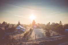Free Image: Cold Winter Morning over Gardening Colony | Download more on picjumbo.com!