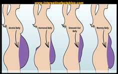 Know more information types of tummies and how to get rid of them, types of tummy fat, types of belly fat, belly fat in men at www.interestingfactsblog.com