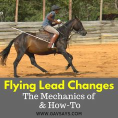 What are Flying Lead Changes? And how do you do them properly? I get these questions all the time - Click the image to find out the answer. Horse Training Tips, Horse Tips, Lead Change, Horse Exercises, Training Exercises, English Riding, Equestrian Outfits, Equestrian Fashion, Equestrian Style