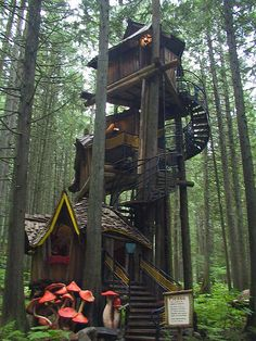 Inspiration to creat suggestion of tree house in grand stair - This photo was taken on September 2004 in Revelstoke, British Columbia, CA. by Geoff Sowrey Future House, My House, Gnome House, Cool Tree Houses, Tree House Designs, Fantasy House, British Columbia, In The Tree, Images Google