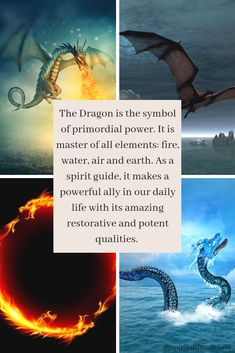 Marvelous Drawing Animals In The Zoo Ideas. Inconceivable Drawing Animals In The Zoo Ideas. Mythological Creatures, Fantasy Creatures, Mythical Creatures, Dragon Energy, Dragon Quotes, Snake Dragon, Animal Spirit Guides, Medieval, In The Zoo