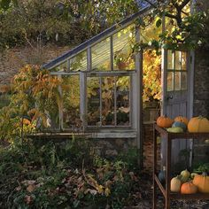 If one looks the definition of a sunroom, it will inform you that it is a greenhouse. What Is A Conservatory, Lean To Greenhouse, Backyard Sheds, Garden Sheds, Garden Path, Backyard Patio, Winter Vegetables, Potting Sheds, Photos Voyages