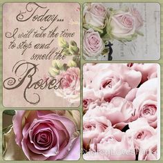 Pink Roses, Today I will take the time to stop and smell the rose Collages, Pretty In Pink, Beautiful Flowers, Decoupage, Color Collage, Collage Photo, Mood Colors, Beautiful Collage, Romantic Roses