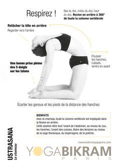 Le chameau - USTRASANA #yoga #asana