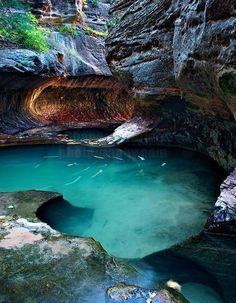 Great Well of Secrets, Zion National Park – Utah