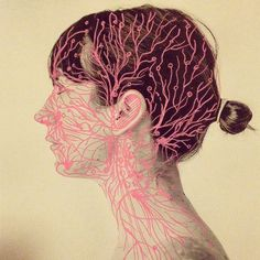 #glands #constructualtheory / foto: @carolinavargasc Juana Gomez - @juana_gomez_m