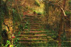The Old Steps... by ~TheBaldingOne on deviantART