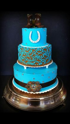 Country Sweet 16 cake!