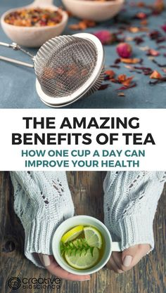 Grab a warm comforting cup of tea and ENJOY! Because there are many amazing benefits of tea and even one cup a day can help improve one's overall health.