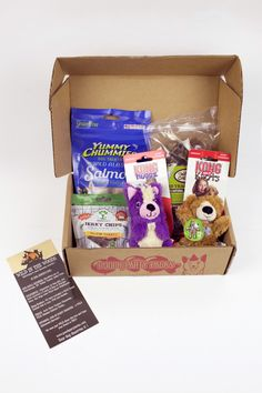 Pooch Party Packs - July 2015 @poochpartypacks #poochpartypacks #subscriptionbox #petbox #dogbox #pets #subscribe