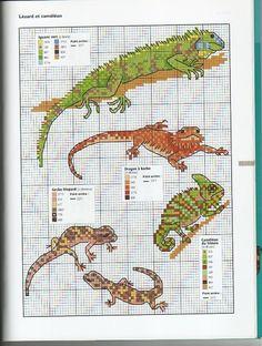lizard / reptile cross stitch