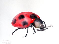 Ladybug original watercolor painting 9 X 12 in by ORIGINALONLY, $20.00