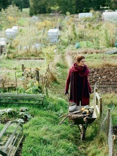 Gardening Autumn - I have just knitted the scarf in the picture. I am very pleased with it. emma freemantle for country living - With the arrival of rains and falling temperatures autumn is a perfect opportunity to make new plantations Country Life, Country Girls, Esprit Country, Vie Simple, Backyard Farming, Dream Garden, Garden Inspiration, Style Inspiration, Vegetable Garden