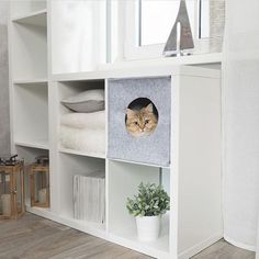 Ikea Kallax Cat Bed Hack