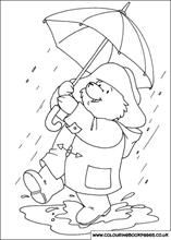 Paddington Bear on a rainy day