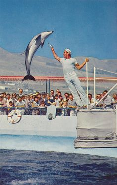 Marineland of the Pacific - Palos Verdes, California by The Pie Shops Collection, via Flickr