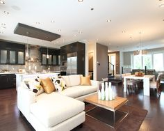 Contemporary Living Room Design, Pictures, Remodel, Decor and Ideas - page 9