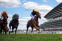 Stradivarius prevails in the Gold Cup at Royal Ascot