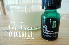 homemade tea tree + coconut oil deodorant