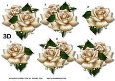 Step by step beautiful cream antique roses.    This sheet is a part from cup721731_936 Mini Kit Cream Antique Roses on French lace !