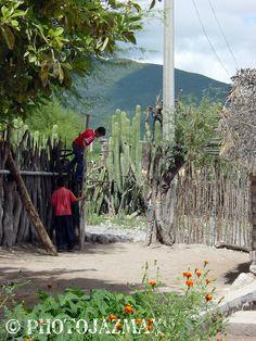 Boys on a Fence, El Aguacate, Tamaulipas, Mexico