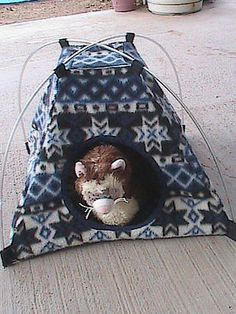 Ferret Camp-Out Tent - Winter Southwest Pattern        wonder if it would fit 2???