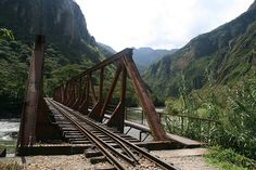 Railroad bridge in the Jungle