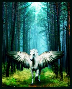 Pegasus is one of the best known mythological creatures in Greek mythology. He is a winged divine horse, usually depicted as white in colour. He was sired by Poseidon, in his role as horse-god, and foaled by the Gorgon Medusa.
