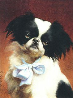 Japanese Chin Dog by Carl Reichert 1890's ~ New Note Cards