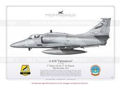"""McDonnell Douglas  Model: A-4M/AR """"Fightinghawk"""""""