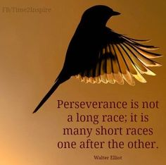 "Perseverance quote via ""Time 2 Inspire"" at www.Facebook.com/Time222Inspire"