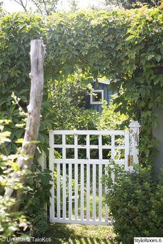valkoinen,puutarha,piha,portti,puuportti