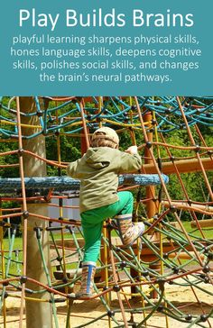 Participants will learn about the Sensorimotor Stage of Development,the Van Dijk Approach,levels of learning in the Sensory Learning Kit and more. Play Based Learning, Learning Through Play, Early Learning, Instructional Strategies, Teaching Strategies, Childhood Education, Kids Education, Education Quotes, Sensory Therapy
