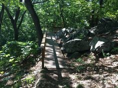 4. Neutaconkanut Park: Rhode Island's Best Kept Secret