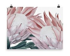 Acrylic pink paint Protea native to Australia. - Scandinavian Design Trends - Have Best Home Decor ! Protea Art, Scandi Style, Free Art Prints, Scandinavian Design, Printable Art, Wall Art, Tapestry, Australia, Pink