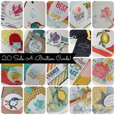 20 Cards Using Sale-A-Bration 2015 Stamp Sets, DSP's, Accessories and Free Blendabilities!
