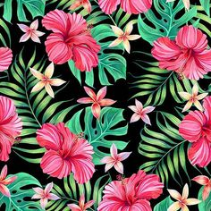 Red Hibiscus on White by Elmira Amirova Seamless Repeat Royalty-Free Stock Pattern Flower Iphone Wallpaper, Love Wallpaper, Pattern Wallpaper, Wallpaper Backgrounds, Exotic Flowers, Tropical Flowers, Beautiful Flowers, Iphone Tela, Tropical Art
