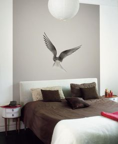 Dove | Mr Perswall Norway