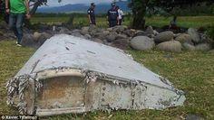 This piece of debris, found in the coastal area of Saint-Andre de la Reunion, has sparked ...